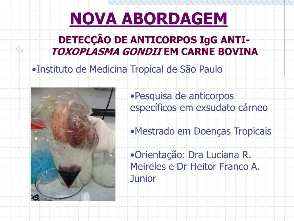 NOVA ABORDAGEM Instituto de Medicina Tropical de São Paulo DETECÇÃO DE ANTICORPOS IgG ANTI- TOXOPLASMA GONDII EM CARNE BOVINA Pesquisa de anticorpos e