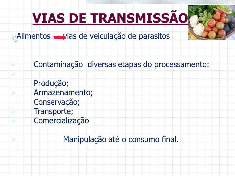 Alimentos vias de veiculação de parasitos Contaminação diversas etapas do processamento: Produção; Armazenamento; Conservação; Transporte; Comercializ