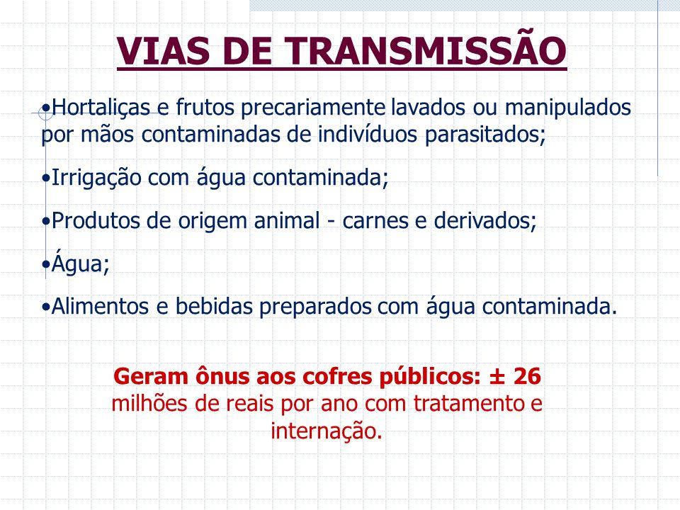 mamarciano@ial.sp.gov.br mamarciano@usp.br marcatui@ial.sp.gov.br