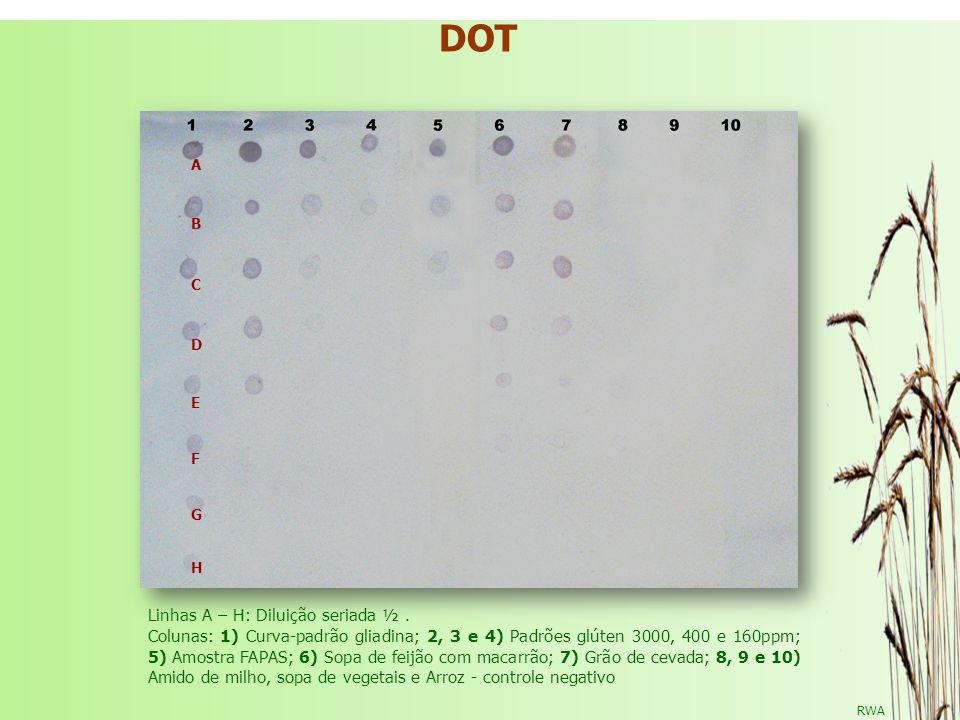 RWA DOT DOT ELISA NA DETECÇÃO DE GLIADINA Linhas A – H: Diluição seriada ½. Colunas: 1) Curva-padrão gliadina; 2, 3 e 4) Padrões glúten 3000, 400 e 16