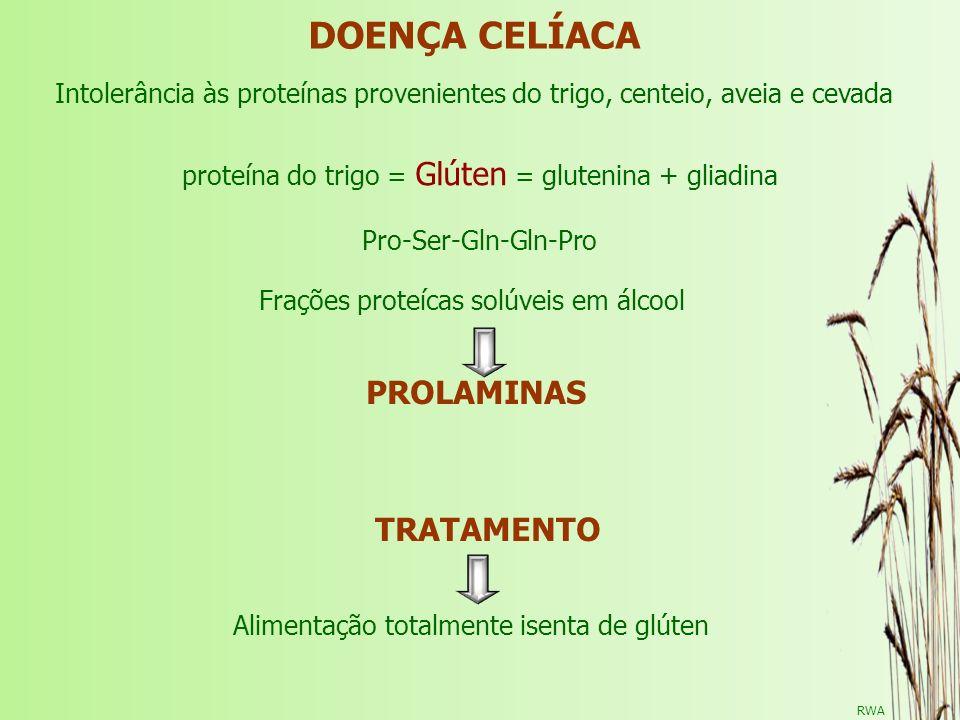 DOENÇA CELÍACA TRATAMENTO Intolerância às proteínas provenientes do trigo, centeio, aveia e cevada PROLAMINAS Frações proteícas solúveis em álcool Ali