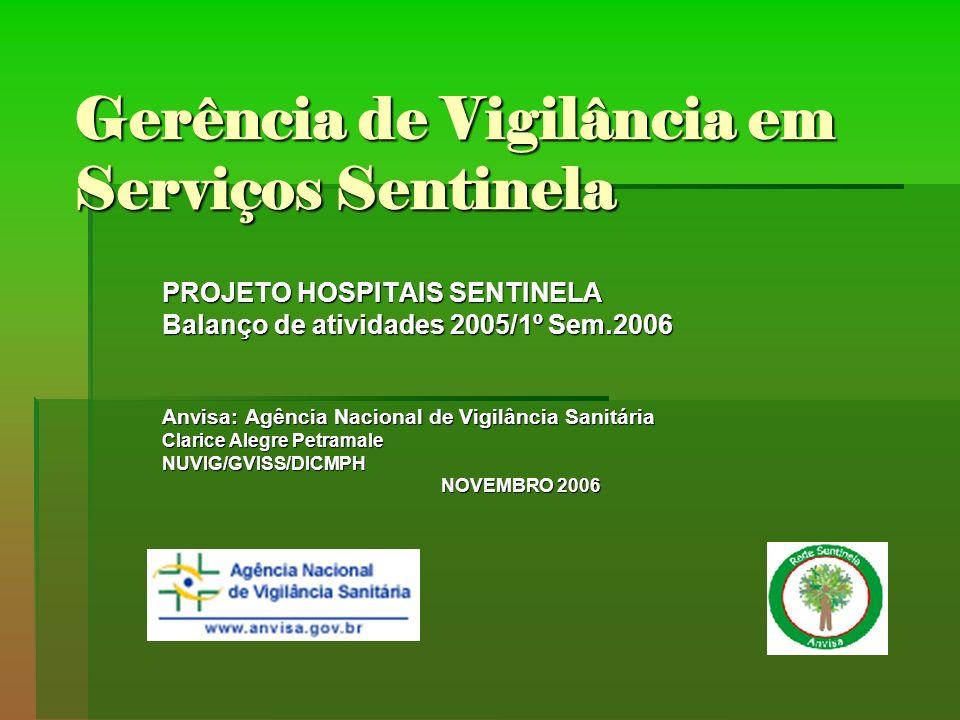 Gerência de Vigilância em Serviços Sentinela PROJETO HOSPITAIS SENTINELA Balanço de atividades 2005/1º Sem.2006 Anvisa: Agência Nacional de Vigilância