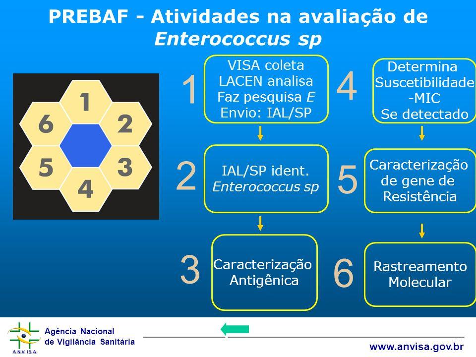 Agência Nacional de Vigilância Sanitária www.anvisa.gov.br 11 1 4 2 5 3 6 VISA coleta LACEN analisa Faz pesquisa E Envio: IAL/SP Determina Suscetibili
