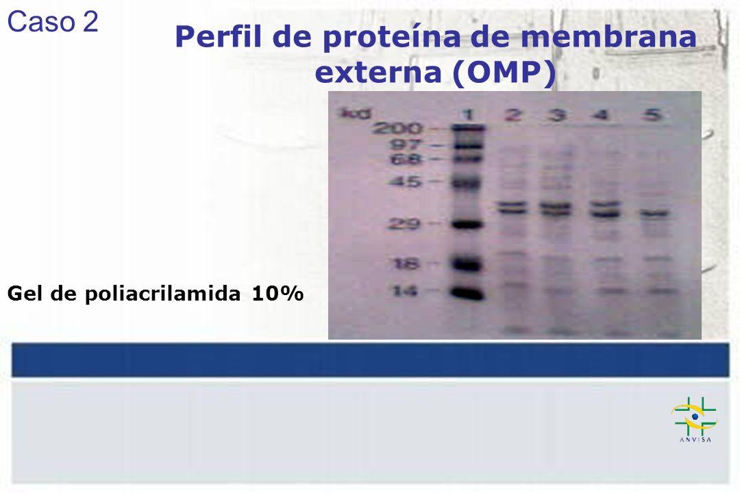 Gel de poliacrilamida 10% Perfil de proteína de membrana externa (OMP) Caso 2