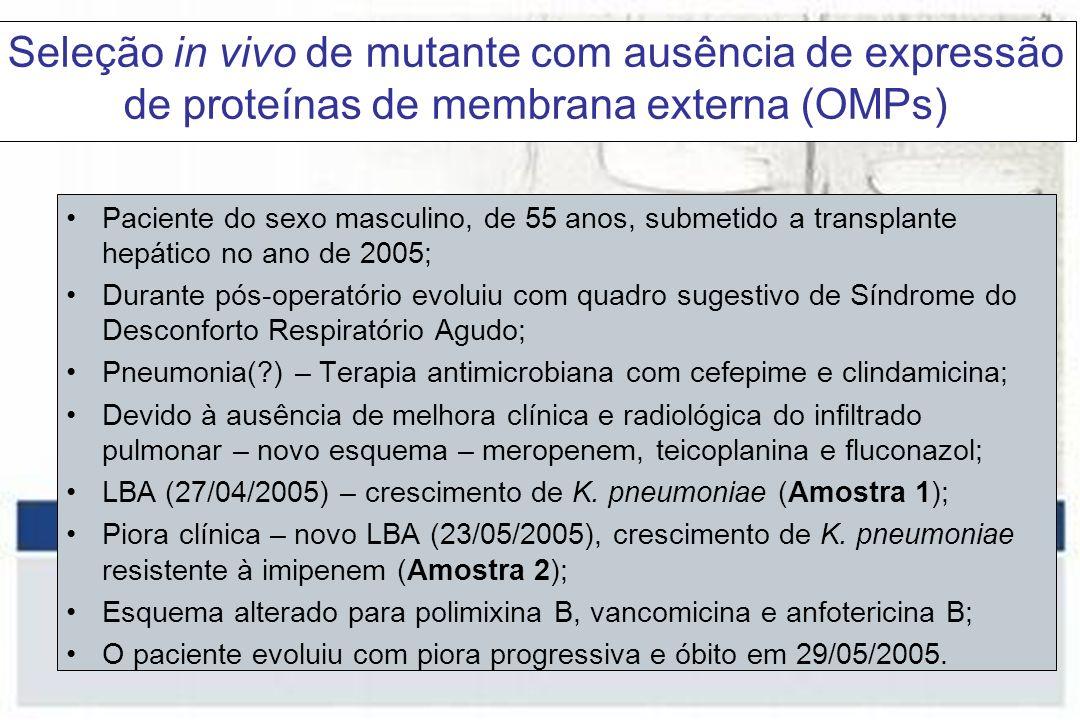 Seleção in vivo de mutante com ausência de expressão de proteínas de membrana externa (OMPs) Paciente do sexo masculino, de 55 anos, submetido a transplante hepático no ano de 2005; Durante pós-operatório evoluiu com quadro sugestivo de Síndrome do Desconforto Respiratório Agudo; Pneumonia(?) – Terapia antimicrobiana com cefepime e clindamicina; Devido à ausência de melhora clínica e radiológica do infiltrado pulmonar – novo esquema – meropenem, teicoplanina e fluconazol; LBA (27/04/2005) – crescimento de K.