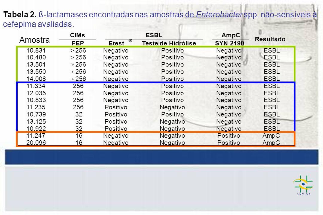 Tabela 2.ß-lactamases encontradas nas amostras de Enterobacter spp.