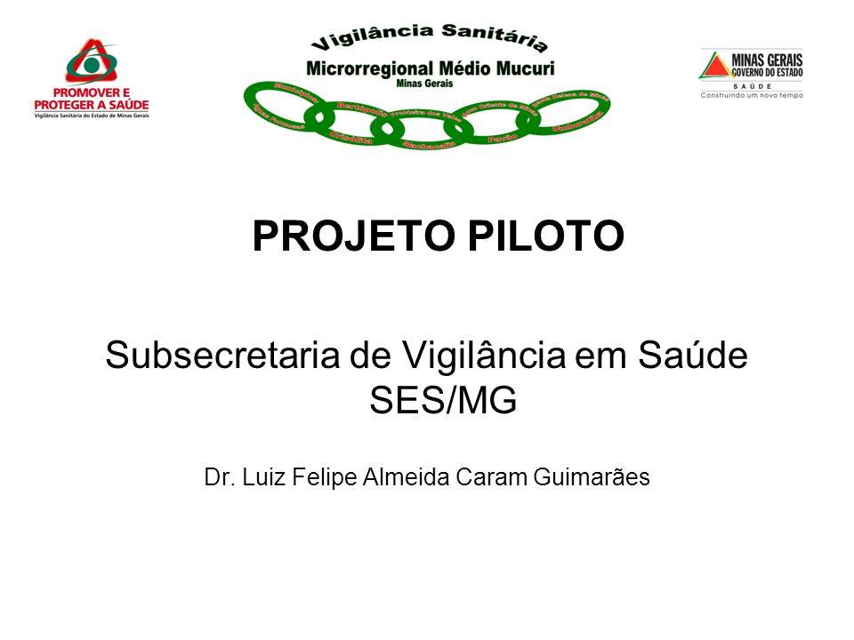 ELABORAÇÃO e ACOMPANHAMENTO Assessoria/Consultoria da Subsecretaria de Vigilância em Saúde/SES-MG.