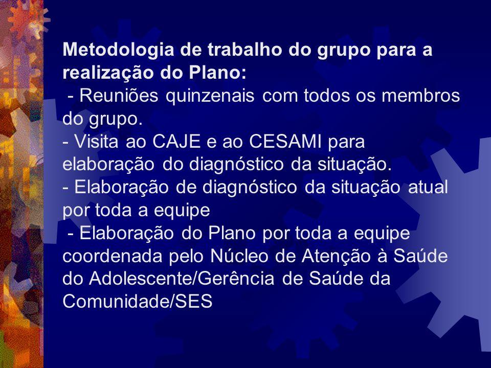 Metodologia de trabalho do grupo para a realização do Plano: - Reuniões quinzenais com todos os membros do grupo. - Visita ao CAJE e ao CESAMI para el