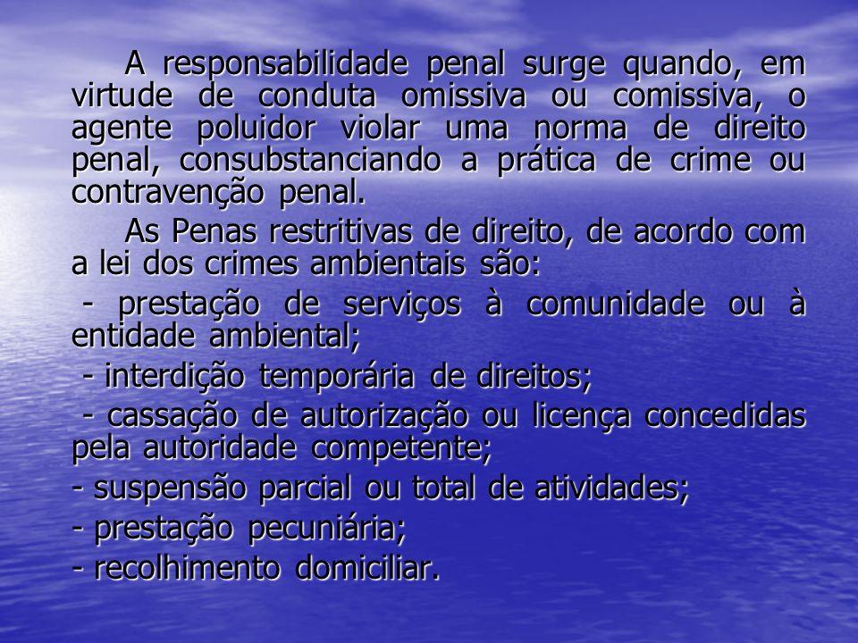 A responsabilidade penal surge quando, em virtude de conduta omissiva ou comissiva, o agente poluidor violar uma norma de direito penal, consubstancia