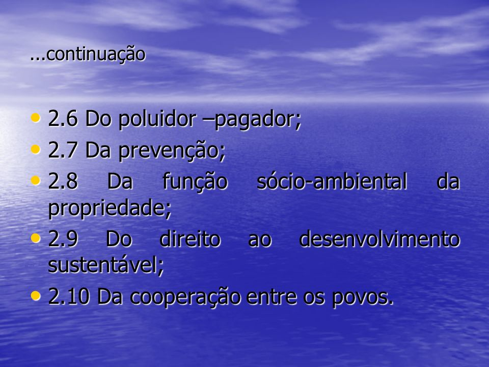 ...continuação 2.6 Do poluidor –pagador; 2.6 Do poluidor –pagador; 2.7 Da prevenção; 2.7 Da prevenção; 2.8 Da função sócio-ambiental da propriedade; 2