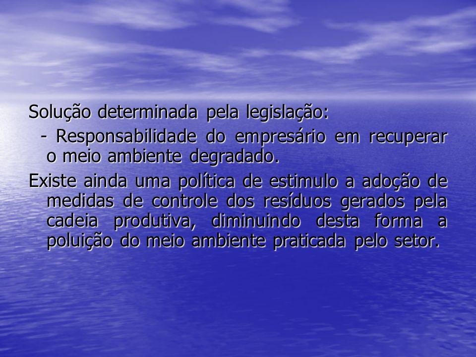 Solução determinada pela legislação: - Responsabilidade do empresário em recuperar o meio ambiente degradado. - Responsabilidade do empresário em recu