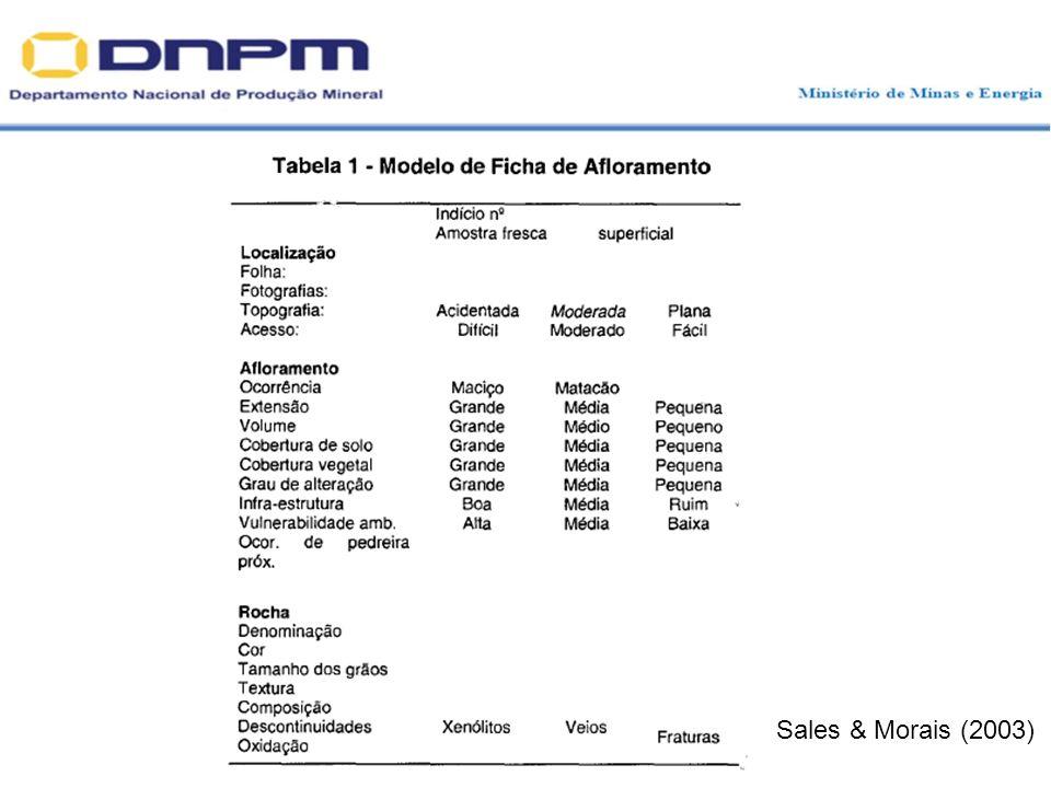 Sales & Morais (2003)