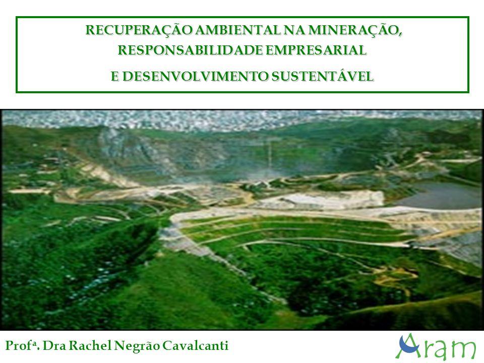 Águas Claras - MBR RECUPERAÇÃO AMBIENTAL NA MINERAÇÃO, RECUPERAÇÃO AMBIENTAL NA MINERAÇÃO, RESPONSABILIDADE EMPRESARIAL E DESENVOLVIMENTO SUSTENTÁVEL Prof a.