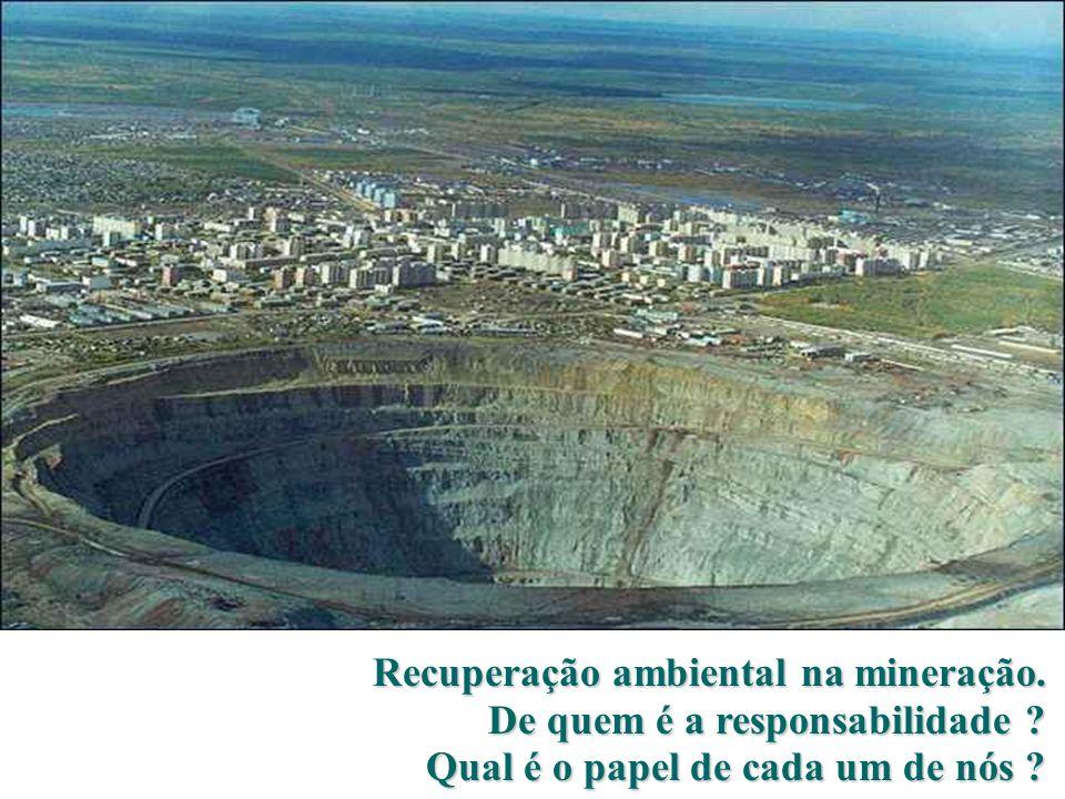 Recuperação ambiental na mineração.De quem é a responsabilidade .