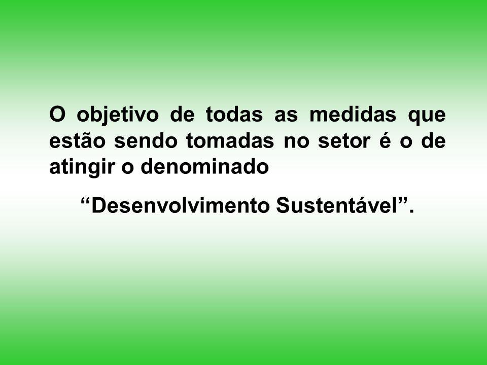 O objetivo de todas as medidas que estão sendo tomadas no setor é o de atingir o denominado Desenvolvimento Sustentável.