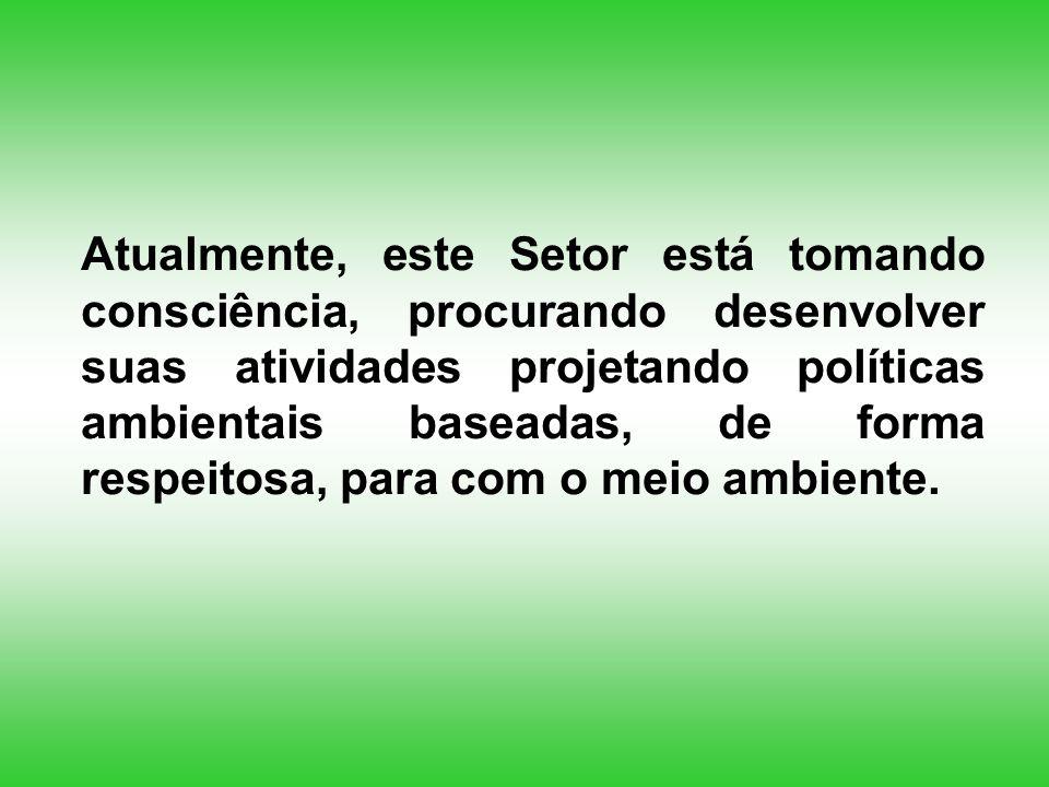 Agenda 21 Brasileira (Objetivo 2) Promover a recuperação do passivo ambiental das empresas por meio de Termos de Ajuste de Conduta, nos quais fiquem claramente estabelecidos os compromissos sobre as técnicas de recuperação, os investimentos alocados e os cronogramas de execução.