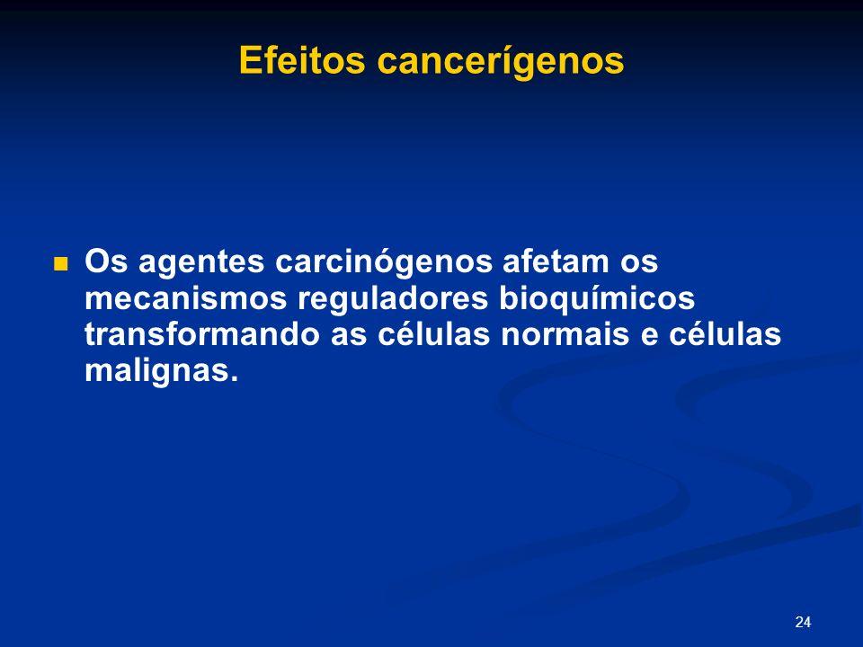 24 Efeitos cancerígenos Os agentes carcinógenos afetam os mecanismos reguladores bioquímicos transformando as células normais e células malignas.