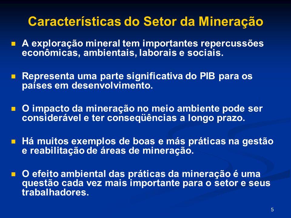 5 Características do Setor da Mineração A exploração mineral tem importantes repercussões econômicas, ambientais, laborais e sociais. Representa uma p