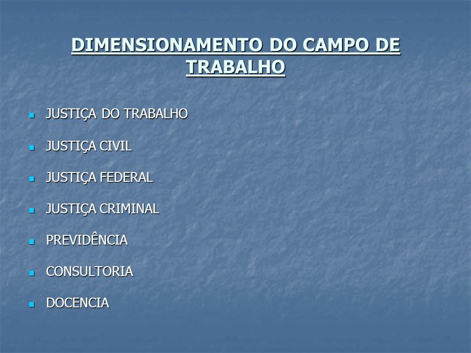 DIMENSIONAMENTO DO CAMPO DE TRABALHO JUSTIÇA DO TRABALHO JUSTIÇA DO TRABALHO JUSTIÇA CIVIL JUSTIÇA CIVIL JUSTIÇA FEDERAL JUSTIÇA FEDERAL JUSTIÇA CRIMI