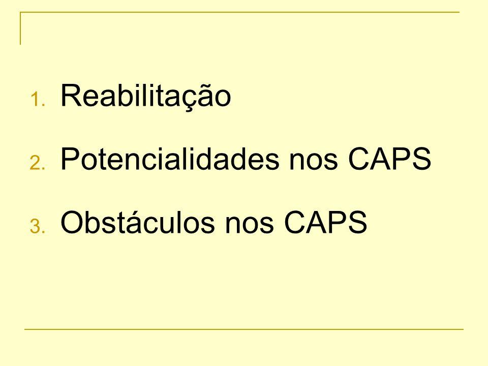 Potencialidades do modelo CAPS 1.Referência continuada 2.Ambiente terapêutico 3.Projeto terapêutico 4.Sinergismo da equipe interdisciplinar 5.Ações na comunidade 6.Flexibilidade do modelo: projetos especiais