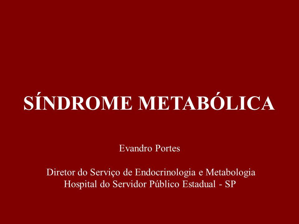 SÍNDROME METABÓLICA Evandro Portes Diretor do Serviço de Endocrinologia e Metabologia Hospital do Servidor Público Estadual - SP