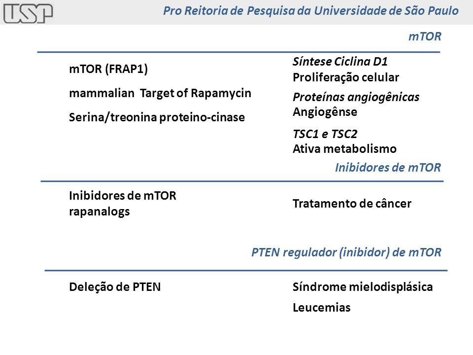 mammalian Target of Rapamycin mTOR (FRAP1) Serina/treonina proteino-cinase Síntese Ciclina D1 Proliferação celular Angiogênse Proteínas angiogênicas T