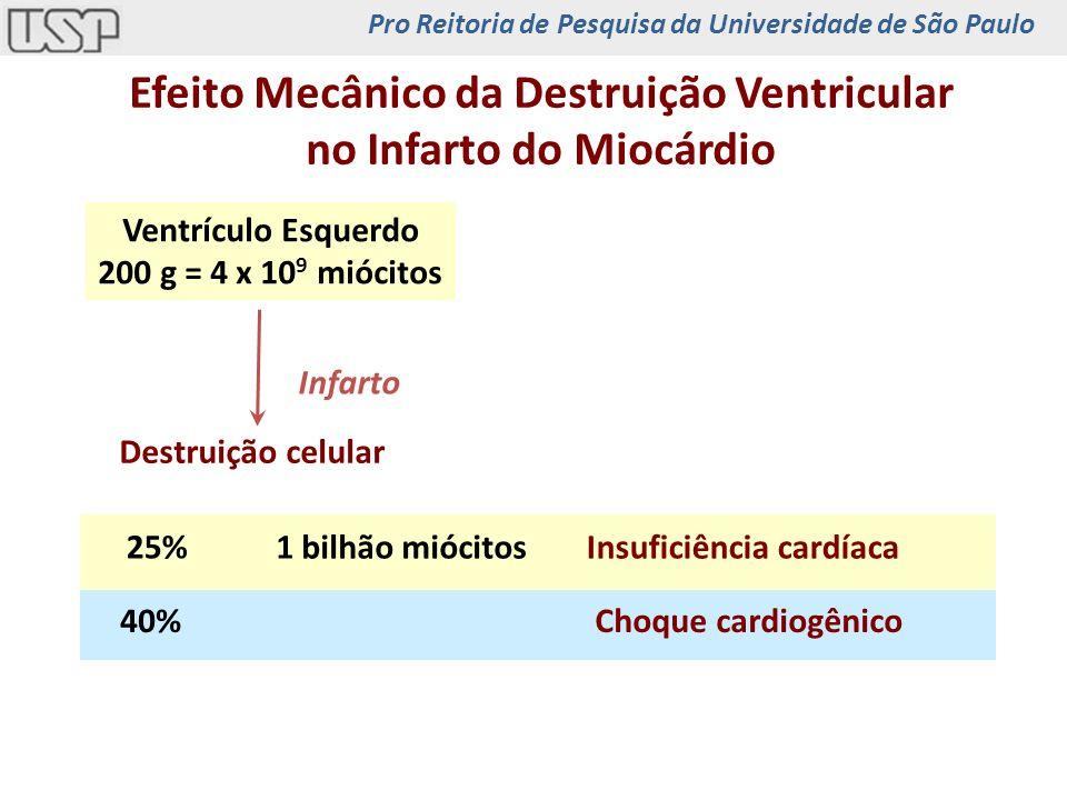 Efeito Mecânico da Destruição Ventricular no Infarto do Miocárdio Choque cardiogênico40% Insuficiência cardíaca1 bilhão miócitos 25% Destruição celula