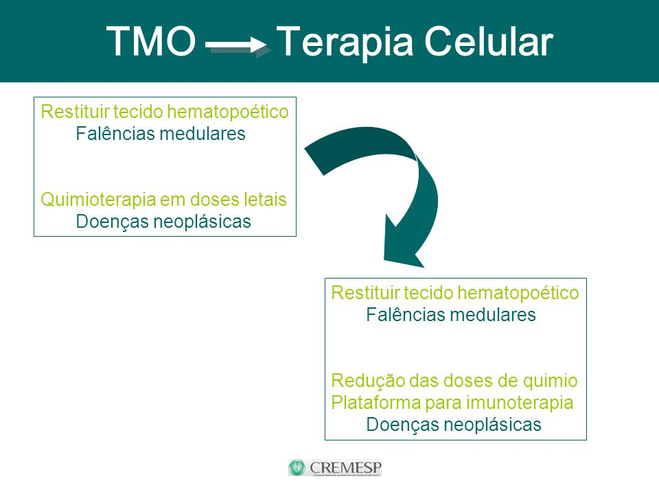 TMO - Terapia Celular Restituir tecido hematopoético Falências medulares Quimioterapia em doses letais Doenças neoplásicas Restituir tecido hematopoét