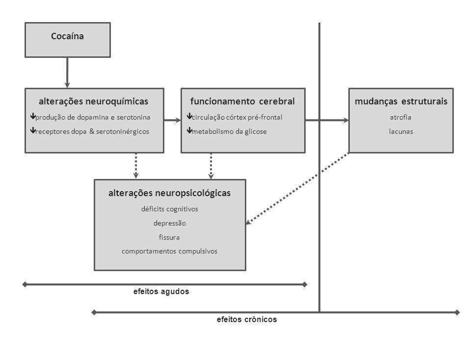 Cocaína alterações neuroquímicas produção de dopamina e serotonina receptores dopa & serotoninérgicos funcionamento cerebral circulação córtex pré-fro
