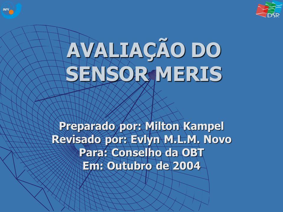 AVALIAÇÃO DO SENSOR MERIS Preparado por: Milton Kampel Revisado por: Evlyn M.L.M. Novo Para: Conselho da OBT Em: Outubro de 2004