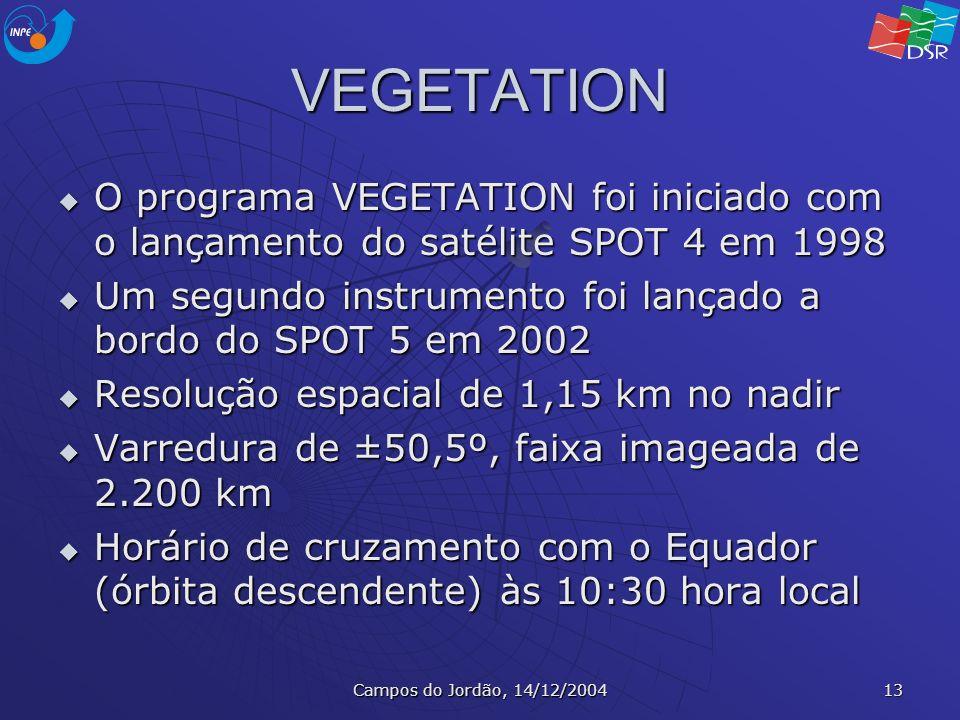 Campos do Jordão, 14/12/2004 13 VEGETATION O programa VEGETATION foi iniciado com o lançamento do satélite SPOT 4 em 1998 O programa VEGETATION foi in