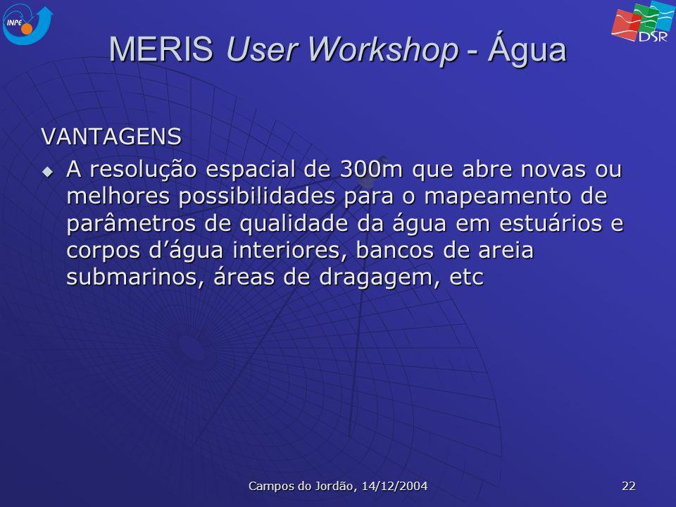 Campos do Jordão, 14/12/2004 22 MERIS User Workshop - Água VANTAGENS A resolução espacial de 300m que abre novas ou melhores possibilidades para o map