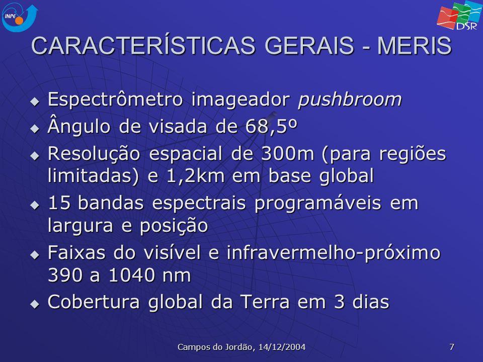 Campos do Jordão, 14/12/2004 7 CARACTERÍSTICAS GERAIS - MERIS Espectrômetro imageador pushbroom Espectrômetro imageador pushbroom Ângulo de visada de