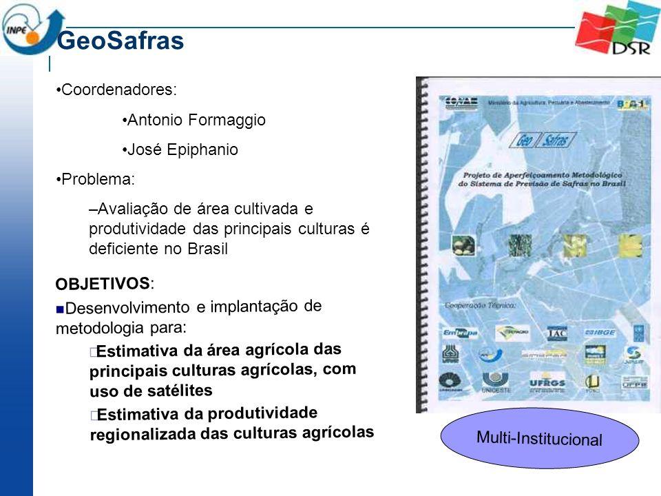 Coordenadores: Antonio Formaggio José Epiphanio Problema: –Avaliação de área cultivada e produtividade das principais culturas é deficiente no Brasil