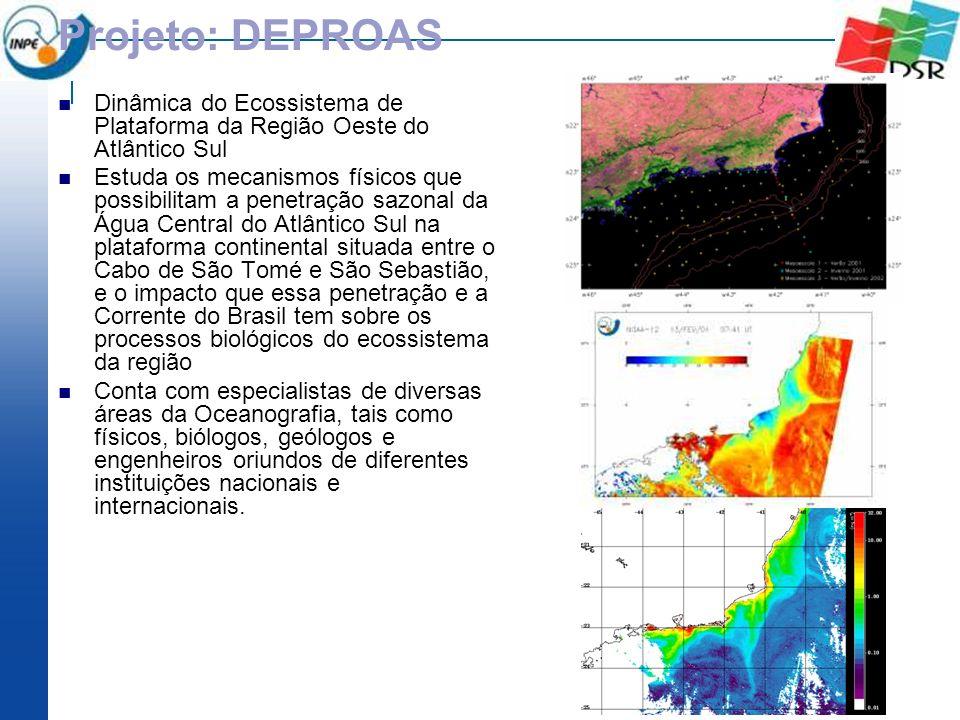 Projeto: DEPROAS Dinâmica do Ecossistema de Plataforma da Região Oeste do Atlântico Sul Estuda os mecanismos físicos que possibilitam a penetração saz