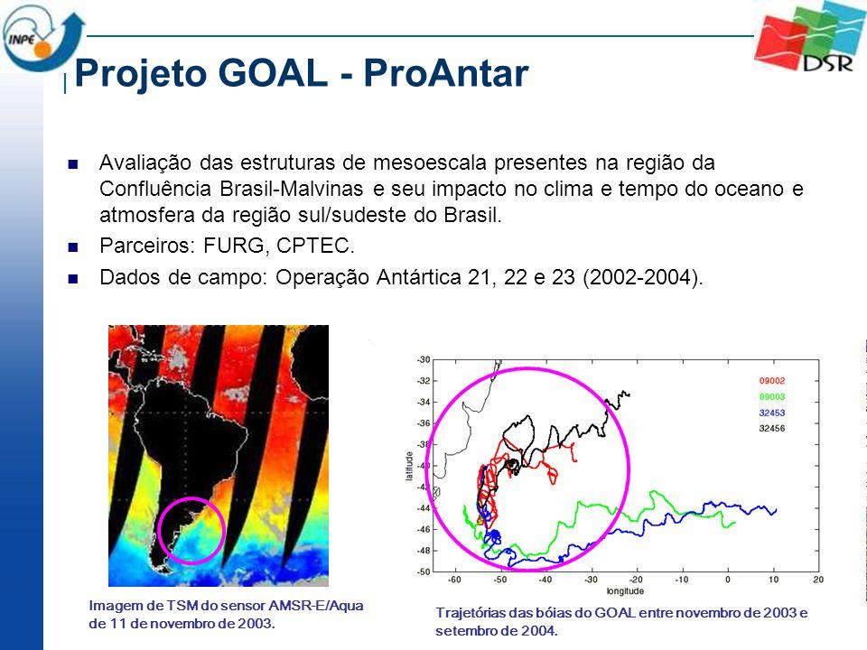 Projeto GOAL - ProAntar Avaliação das estruturas de mesoescala presentes na região da Confluência Brasil-Malvinas e seu impacto no clima e tempo do oc