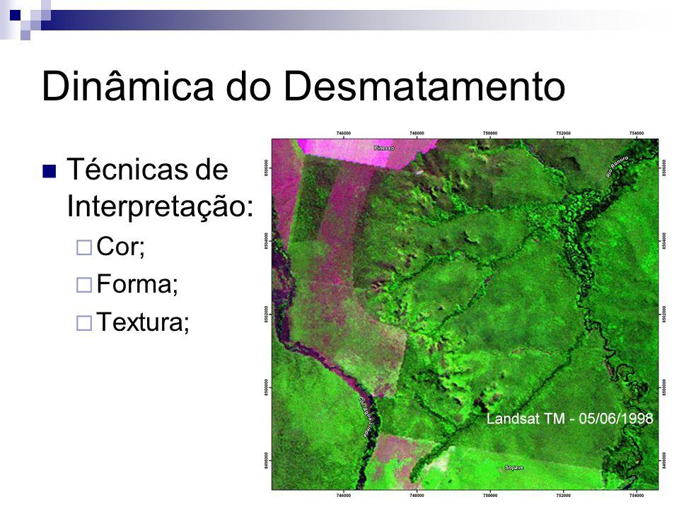 Dinâmica do Desmatamento Técnicas de Interpretação: Cor; Forma; Textura;