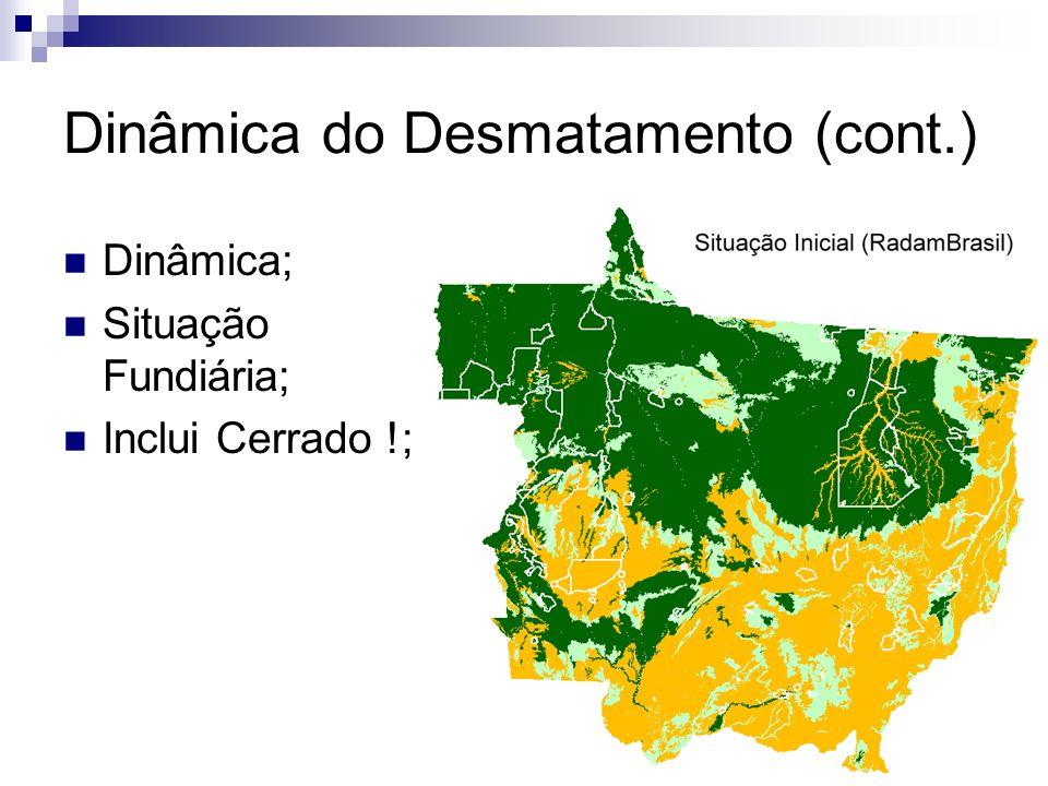 Dinâmica do Desmatamento (cont.) Dinâmica; Situação Fundiária; Inclui Cerrado !;
