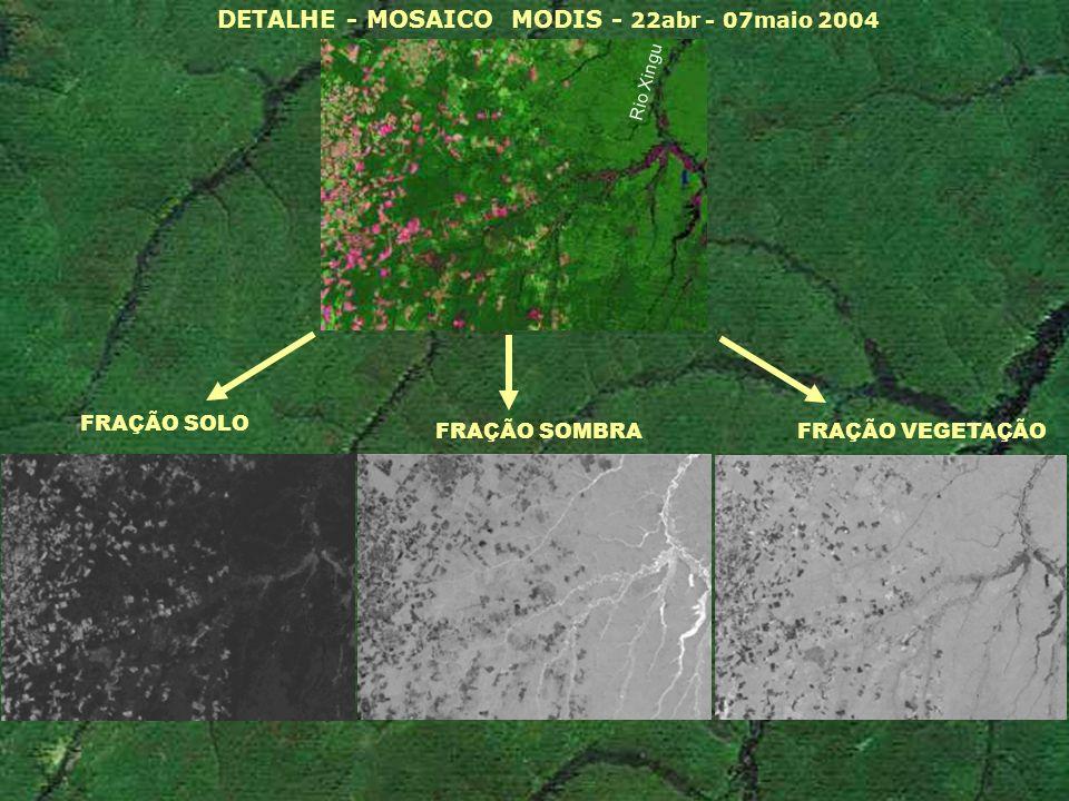 DETALHE - MOSAICO MODIS - 22abr - 07maio 2004 FRAÇÃO SOLO FRAÇÃO SOMBRA FRAÇÃO VEGETAÇÃO Rio Xingu