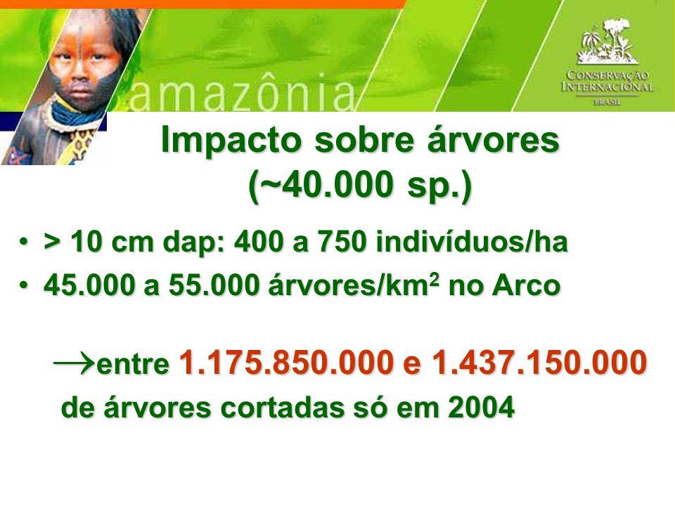 Impacto sobre árvores (~40.000 sp.) > 10 cm dap: 400 a 750 indivíduos/ha> 10 cm dap: 400 a 750 indivíduos/ha 45.000 a 55.000 árvores/km 2 no Arco45.00