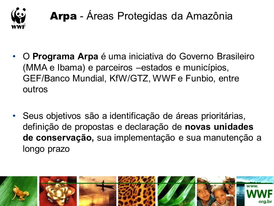 Arpa - Áreas Protegidas da Amazônia O Programa Arpa é uma iniciativa do Governo Brasileiro (MMA e Ibama) e parceiros –estados e municípios, GEF/Banco