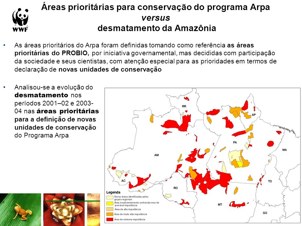 Áreas prioritárias Arpa e o desmatamento 10 polígonos (8 de extrema importância) apresentaram acréscimo no desmatamento em porcentagens superiores a 10% da sua área no período 2001-04, dos quais 2 com mais de 25% e 1 com mais de 50% Acréscimo desmatamento 01-04Número de áreas 1 - 10 %26 10 - 25 %7 25 - 50 %2 > 50 %1