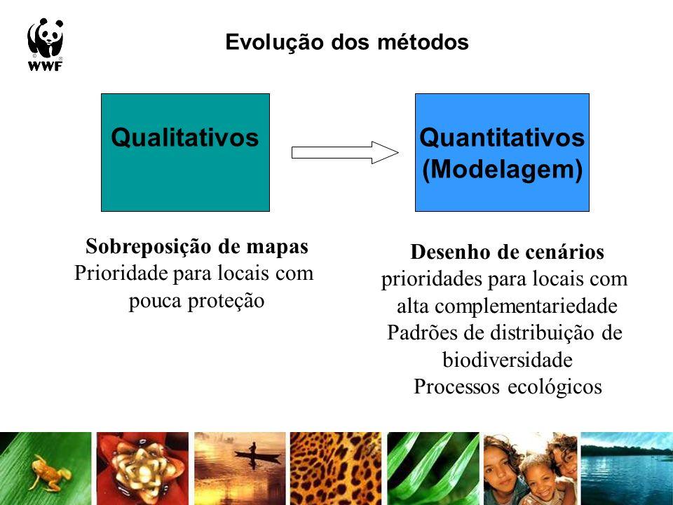 Evolução dos métodos QualitativosQuantitativos (Modelagem) Sobreposição de mapas Prioridade para locais com pouca proteção Desenho de cenários priorid
