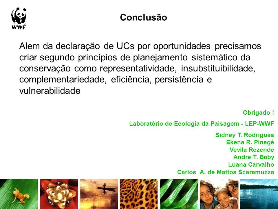 Conclusão Obrigado ! Laboratório de Ecologia da Paisagem - LEP-WWF Sidney T. Rodrigues Ekena R. Pinagé Vevila Rezende Andre T. Baby Luana Carvalho Car