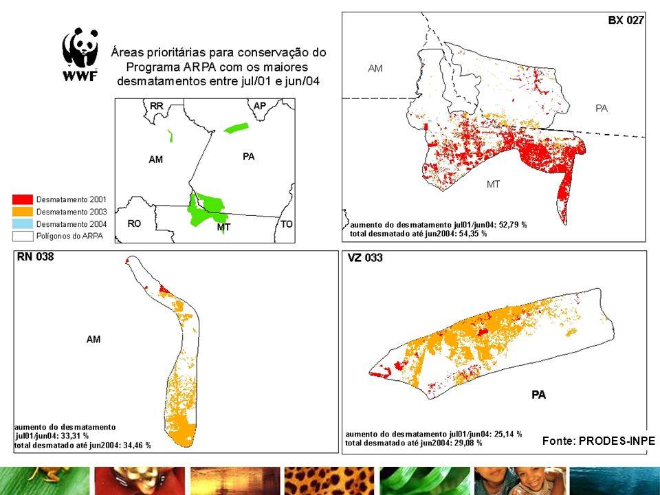 Metas de criação de UCs ( 2 x 90 000 km 2) da 1° fase do programa Arpa (2007) Proteção Integral - ultrapassada em 02/05 Uso sustentável - próximo ao valor definido Criação de unidades de conservação