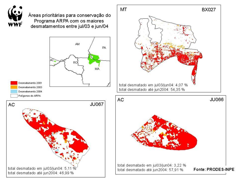 Áreas prioritárias Arpa e o desmatamento Áreas dos polígonos propostos pelo ARPA por Estado e suas taxas de desmatamento EstadoÁrea proposta ARPA (ha)Desmatamento 2004 (ha)% Incremento 2004 Roraima3,484,685.627,589.10.220.00 Amapá4,199,270.4648,700.91.160.00 Amazonas15,572,589.43317,081.62.040.04 Pará23,203,625.331,621,244.76.990.49 Acre3,589,794.45423,685.511.800.64 Tocantins106,127.2212,765.012.030.57 Rondônia1,313,219.47238,982.918.201.08 Mato Grosso12,559,486.413,398,438.127.062.44