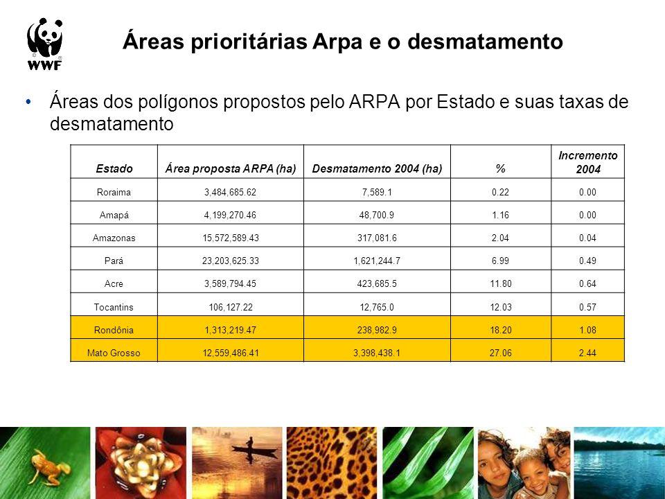 Ecorregiões versus desmatamento Analisou-se a evolução do desmatamento dos períodos 2001-02 a 2003- 04 nas ecorregiões do bioma amazônico, sendo que 5 já apresentam mais de 10 % de sua área desmatada EcorregiãoÁrea Total (ha)Desmat em 2004 (ha)% Tepuis98,685.7011.320.01 Florestas Úmidas do Solimões-Japurá3,617,884.398,101.950.22 Florestas Úmidas das Guianas7,169,331.3516,407.030.23 Florestas de Altitude das Guianas11,363,972.0642,542.210.37 Campinarana do Rio Negro8,064,073.4133,299.100.41 Florestas Úmidas do Juruá-Purus24,256,321.91128,734.340.53 Florestas Úmidas do Negro-Branco4,881,718.8334,631.920.71 Florestas Úmidas de Caquetá1,277,332.8211,175.270.87 Florestas Úmidas do Japurá-Solimões-Negro23,563,351.21275,382.461.17 Várzea do Purus14,447,186.01314,628.802.18 Florestas das Várzeas de Marajó8,767,712.40302,046.833.44 Savanas das Guianas7,789,905.55318,274.574.09 Florestas Úmidas do Purus-Madeira17,400,849.71709,024.694.07 Florestas Úmidas do Uatumã-Trombetas47,255,448.151,933,014.874.09 Sudoeste da Amazônia31,800,093.991,376,441.294.33 Várzea de Gurupá992,576.7379,327.897.99 Florestas Úmidas do Tapajós-Xingú33,657,550.622,643,644.477.85 Várzea de Monte Alegre6,676,914.38547,115.008.19 Florestas Úmidas do Madeira-Tapajós65,947,302.3911,133,887.8516.88 Várzea de Iquitos3,120,085.45603,861.1019.35 Florestas Secas do Mato Grosso41,400,717.6010,375,888.1825.06 Florestas Úmidas do Xingú-Tocantins-Araguaia26,624,072.727,370,441.5927.68 Florestas Úmidas do Tocantins-Pindaré19,362,911.388,938,315.5646.16