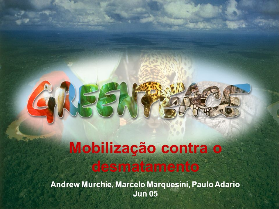 Mobilização contra o desmatamento Andrew Murchie, Marcelo Marquesini, Paulo Adario Jun 05