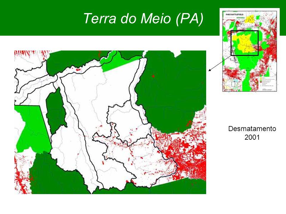 Terra do Meio (PA) Desmatamento 2001
