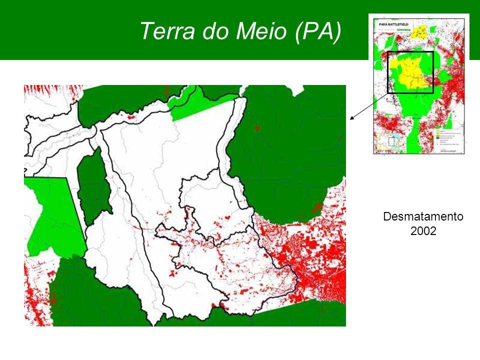 Terra do Meio (PA) Desmatamento 2002